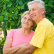 Aged couple at nature - Stock Photo