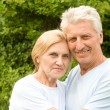 Old couple portrait — Foto Stock