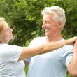 Old couple dancing — Stock Photo #7002402