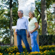 Old couple at park - Stock Photo