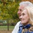 Nice old couple — Stockfoto
