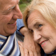 Cute old couple — Stock Photo #7316439