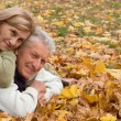 Aged couple on leaves — Stock Photo