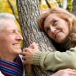 Royalty-Free Stock Photo: Happy old couple at forest