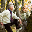 Royalty-Free Stock Photo: Two elderly at forest