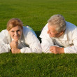 Old family on grass - Stock Photo