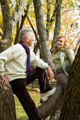 Two elderly at forest — Stock Photo