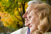 Happy aged couple in park — Stock Photo