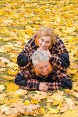 Casal no parque — Foto Stock