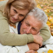 Royalty-Free Stock Photo: Aged couple on leaves