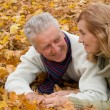 Old couple on leaves — Stock Photo