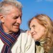 Aged couple at sky — Stock Photo #7666613