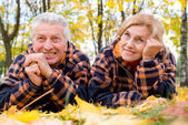 Aged couple on leaves — Stockfoto