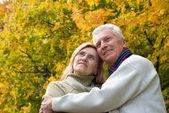 Elderly couple portrait — Stock Photo
