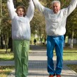 Active old jump in park — Stock Photo