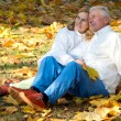 Old couple sits on leaves — Stock fotografie