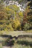 Mountain Hiking Trail in Fall — Stockfoto