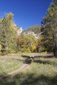 Mountain Hiking Trail in Fall — Stock Photo