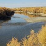 Fall on the Arkansas River — Stock Photo