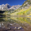 Maroon Bells in Fall — Stock Photo #7687890