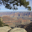 Grand Canyon National Park, Arizona - Zdjęcie stockowe