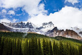 Rocky mountain — Foto Stock