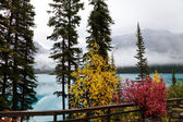 Emerald Lake — Photo