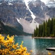 Moraine Lake — Stock Photo #7292264