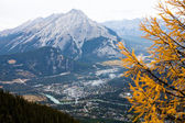 Banff — Stock Photo
