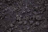 Black Soil — Stock Photo