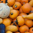 Pumpkin — Stock Photo #7369200