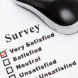 Survey — Stock Photo
