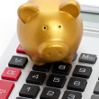 Stock Photo: Piggy Bank and Calculator