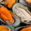 Mussel — Stock Photo #7409469