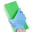 Green Sponge — Stock Photo