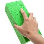 Green Sponge — Stock Photo