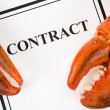 Lobster Claw and Business Contract — Stock Photo
