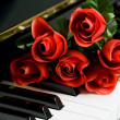 Piano Key and rose — Stock Photo #7494933