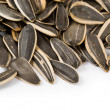 Sunflower Seed — Stock Photo