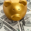 Piggy Bank and Dollar — Stock Photo