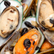 Mussel — Stock Photo #7631516