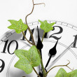 Stock Photo: Clock and ivy