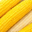 Cooked Corn — Foto de Stock