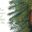 Fir tree branches with cone. - Stock Photo