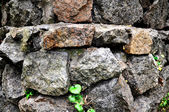 Rough stone masonry — Foto Stock