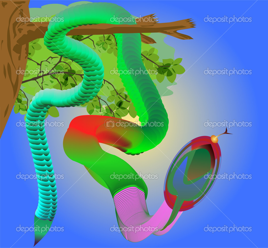 Vector image of tropical venomous snake motley — Stock Vector #6815214