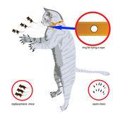 кошка хантер — Cтоковый вектор