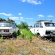 Two old cars — Stock Photo