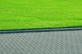 Green grass and pedestrian walkway. — Stock Photo