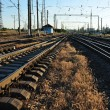 Railroads and grass — Stock Photo
